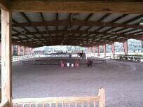 Highlife Farms: 8001 Clarcona Ocoee Rd, Orlando, FL