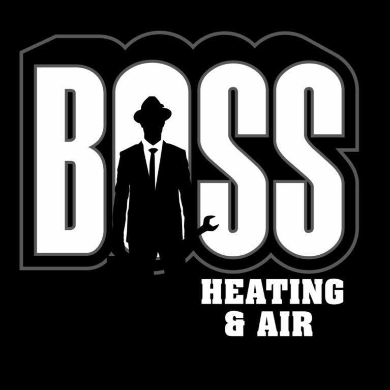 BOSS Services: 221 E Logan St, Coloma, MI