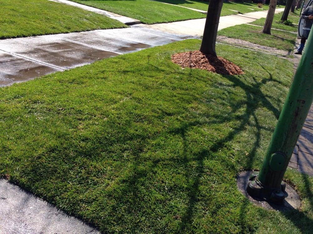 JCO Lawn Care Service: Chicago, IL