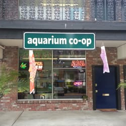 Aquarium Co Op 54 Photos 44 Reviews Aquarium