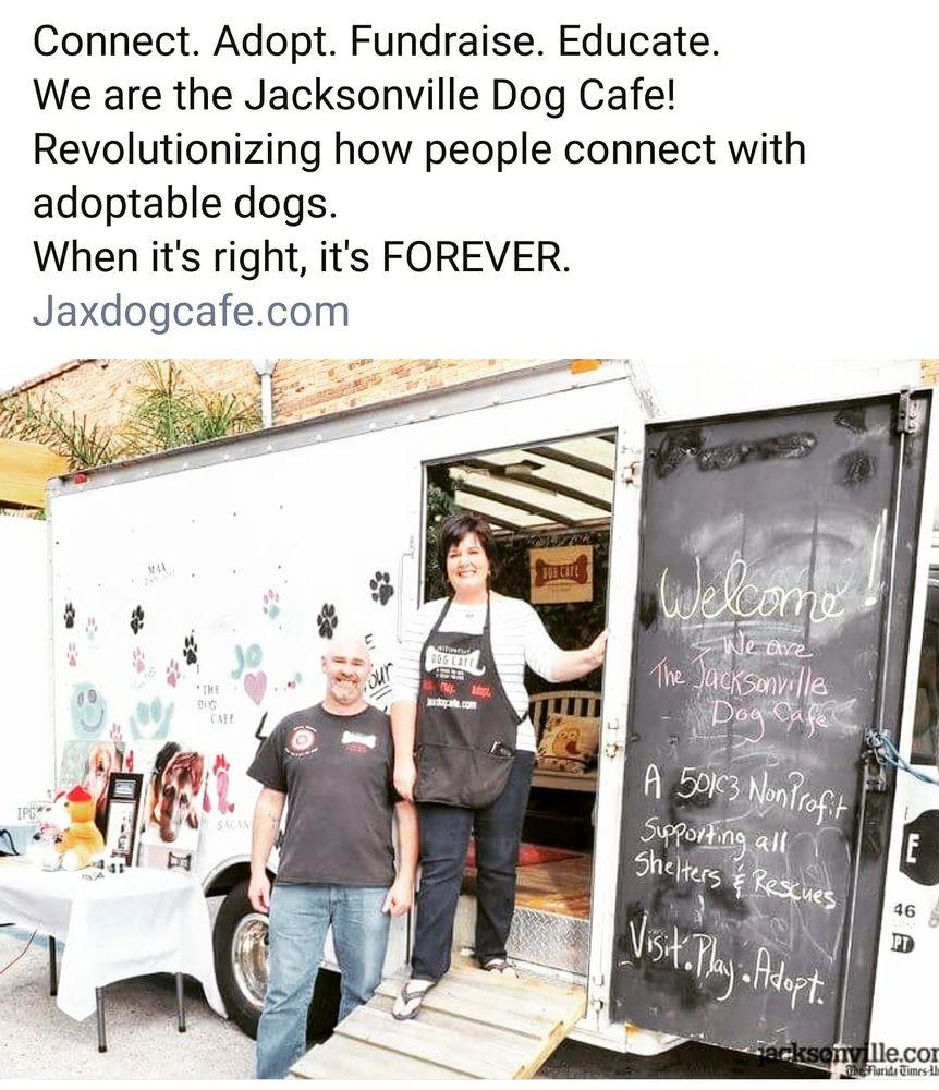 Jacksonville Dog Cafe: Jacksonville, FL