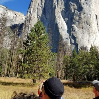 Marvelous Photo Of Yosemite Valley Floor Tour   Yosemite Valley, CA, United States
