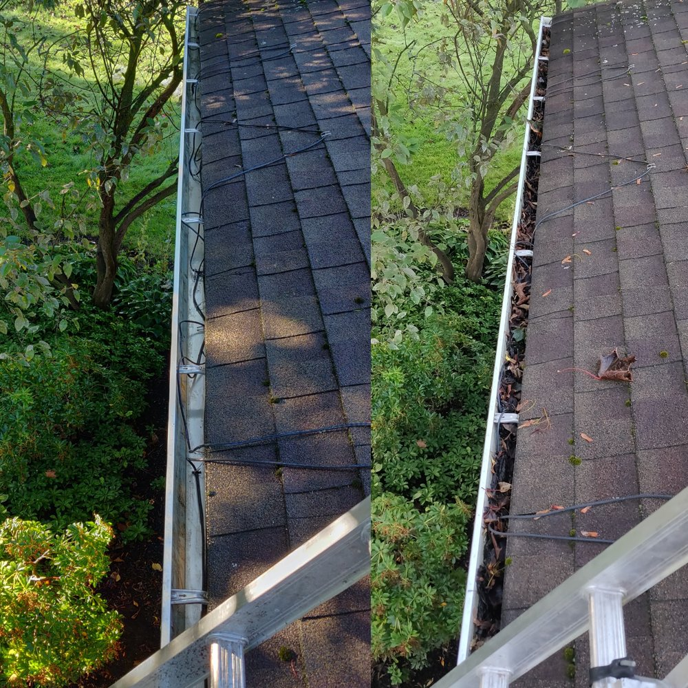 Lockport Cleanup: 5677 South Transit Rd, Lockport, NY