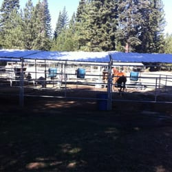 Tahoe Donner Equestrian Center Horseback Riding 15275