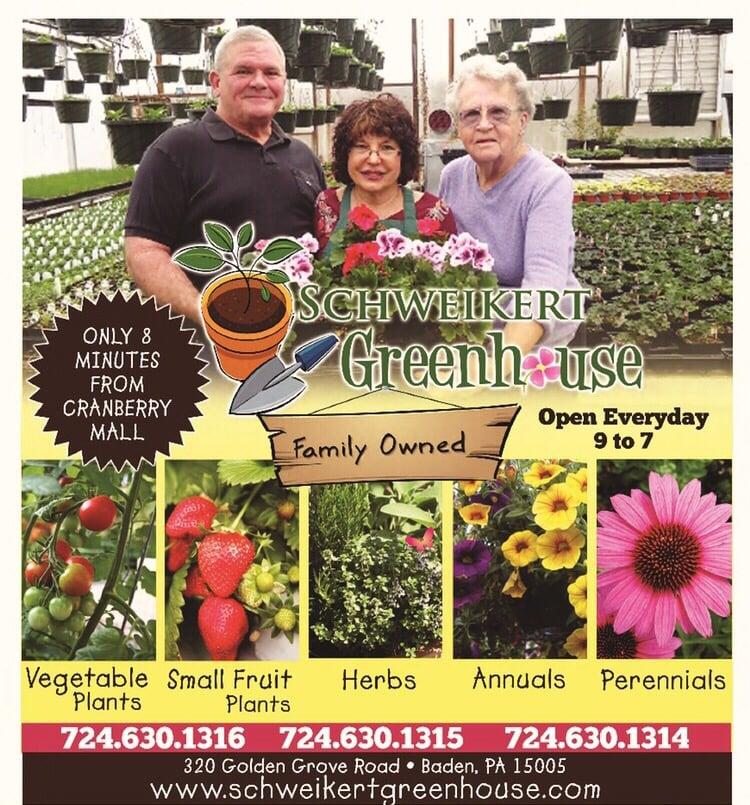 Schweikert Greenhouse: 322 Wallrose Heights Rd, Baden, PA