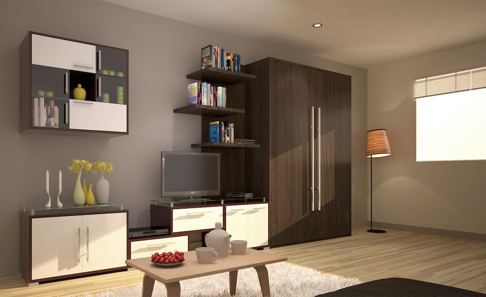 Maximize your studio apartment or condo with a Murphy wall bed