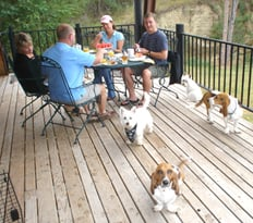 Anise's BnB4Pets: 1 Canyon View Cir, Hot Springs, SD