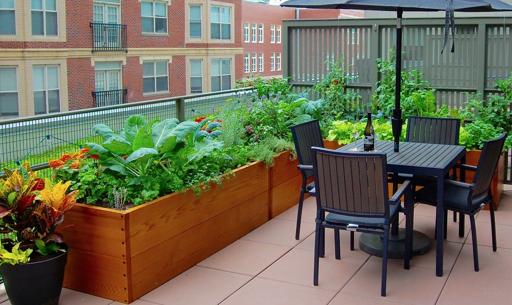 HomeHarvest, Custom Edible Gardens: 23 Dartmouth St, Arlington, MA