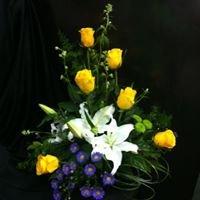 La Pegasus Florist & Gifts: 103 Parkway Dr, El Dorado, AR