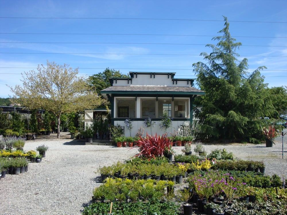 Green Point Nursery: 275 Olive Ave, Novato, CA