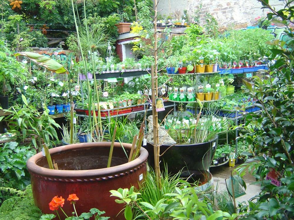 Newtown Garden Market - Gardening Centres - 538 King St, Newtown ...