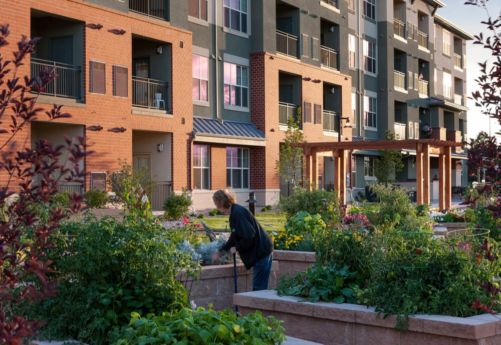 wheat ridge town center affordable senior living apartments located