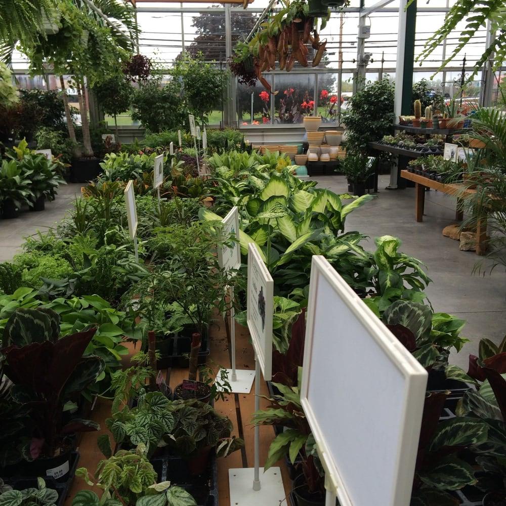 Plants Yelp