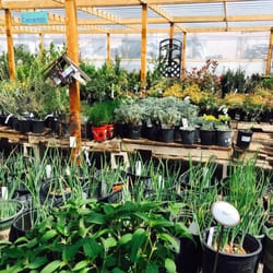 photo of rehms nursery and garden center albuquerque nm united states - Albuquerque Garden Center
