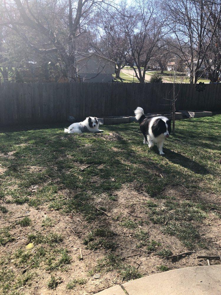 Jillian's Mobile Pet Spa: 15215 Seward Plz, Omaha, NE