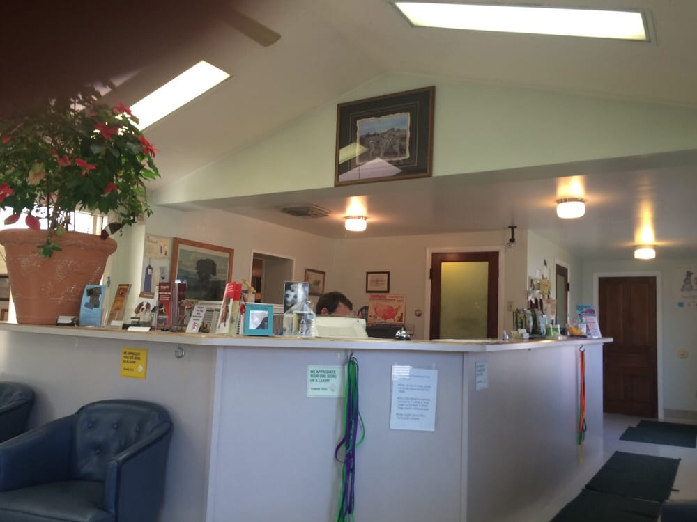 Cedar Veterinary Clinic: 533 N Airport Rd, Cedar City, UT