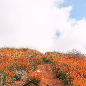 Walker Canyon Ecological Reserve - 817 Photos & 135 Reviews