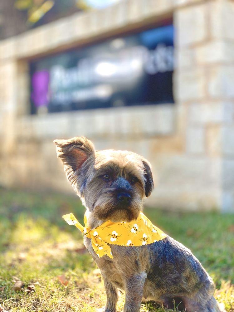 Pawlished Pets: 412 W Rock Island Ave, Boyd, TX