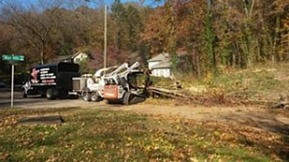 Big Woody's Tree Service: 4018 Alabama Rd, Apison, TN