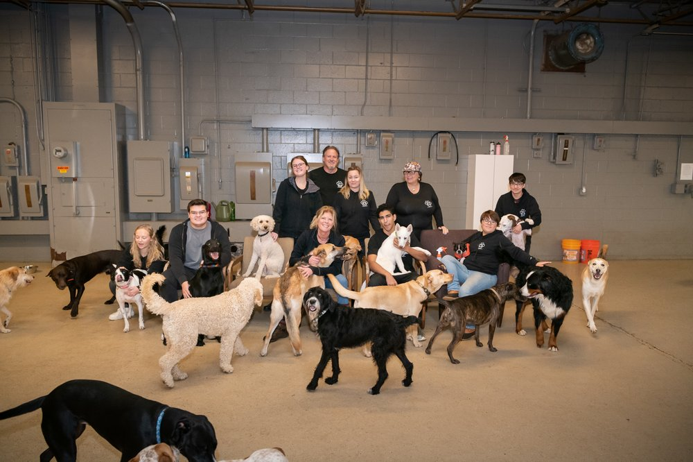 Paws Doggy Daycare: 6340 Industrial Dr, Eden Prairie, MN