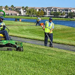 aaa commercial property maintenance and landscaping handyman san