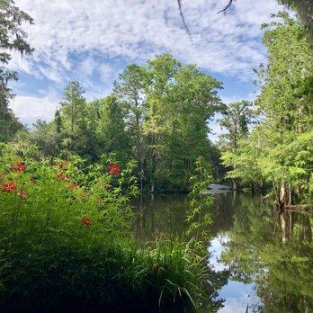 Magnolia Plantation Gardens 1102 Photos 359 Reviews Botanical Gardens 3550 Ashley