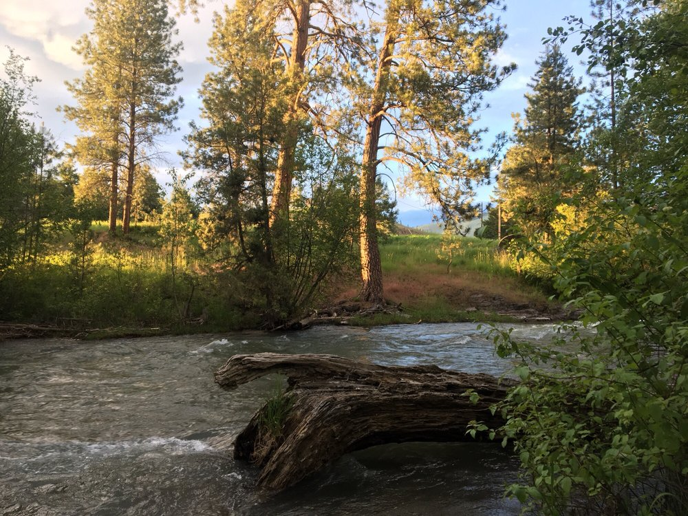 Jocko Hollow Campground: 71364 Campground Ln, Arlee, MT