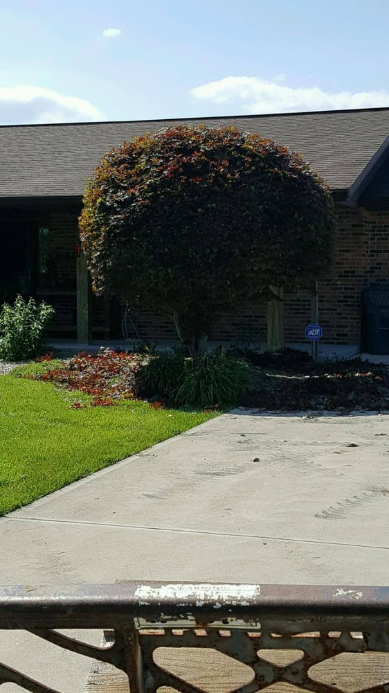 Pro Cuts Landscaping & Lawn Care: Aurora, IN