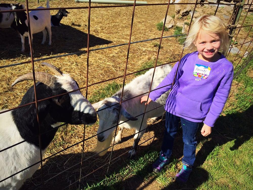 Hill High Farms: 933 Barley Ln, Winchester, VA
