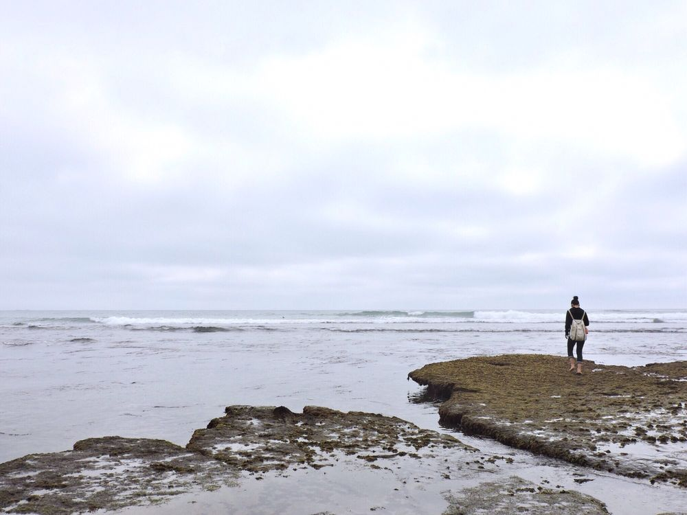 Swami's State Beach