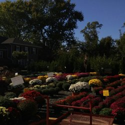 Photo Of Countryview Farm Nursery Monroe Township Nj United States