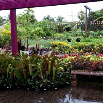 Flamingo Road Nursery 646 Photos 143 Reviews Nurseries Gardening 1655 S Rd Davie Fl Phone Number Yelp