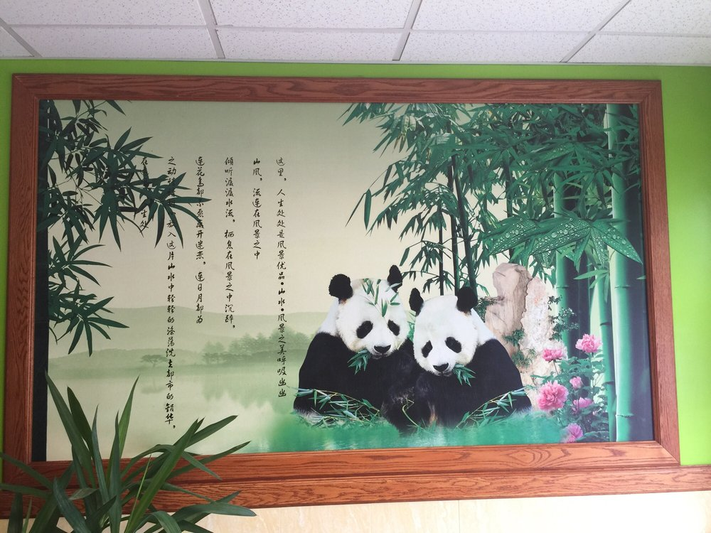 New jade garden 24 reviews chinese 519 w main st meriden new jade garden 24 reviews chinese 519 w main st meriden ct restaurant reviews phone number menu yelp sciox Gallery