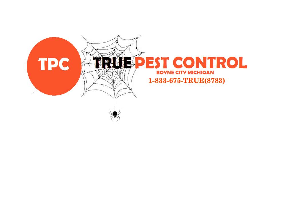True Pest Control: 2620 Healey Rd, Boyne City, MI