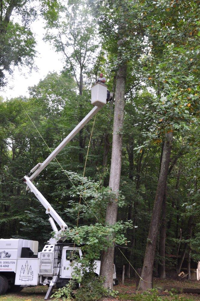 C I W Tree Service: 17635 Oriole Dr, Cobb Island, MD