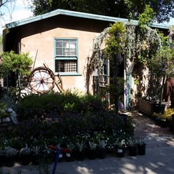 Lincoln Avenue Nursery