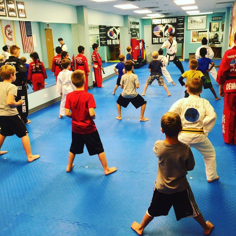 Park's Champion Taekwondo: 587 N York St, Elmhurst, IL