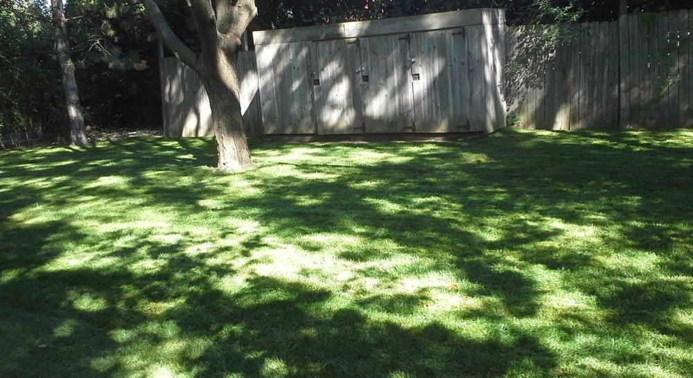 Felipe's Complete Lawn Maintenance Service