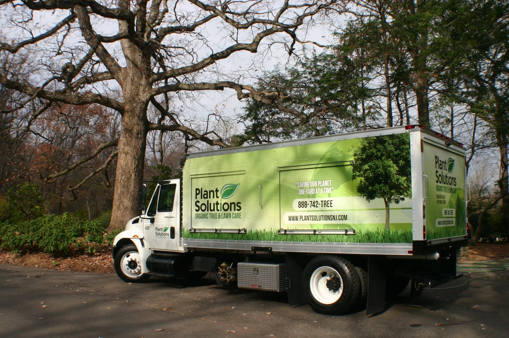 Plant Solutions Tree and Lawn Care Service: 79 Bernards Ave, Bernardsville, NJ
