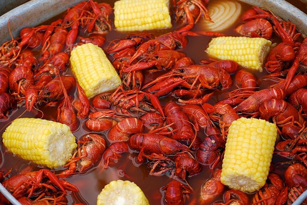 The Crawfish Shack: 181 Hwy 425 S, Monticello, AR