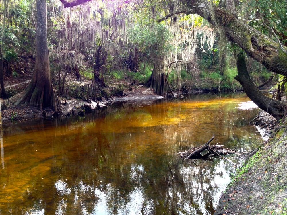 Paynes Creek Historic State Park: 888 Lake Branch Rd, Bowling Green, FL