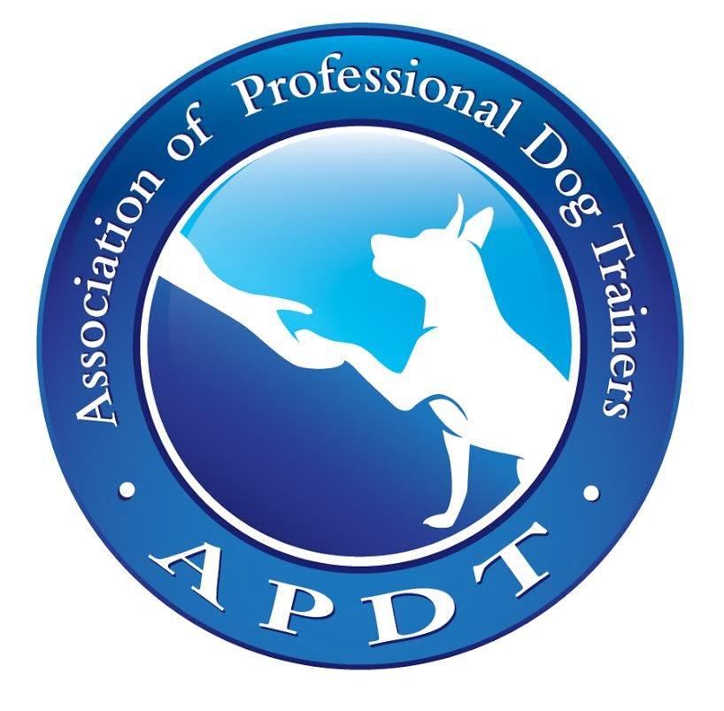 Companion K9 Dog Training: 256 Oak St, Selmer, TN