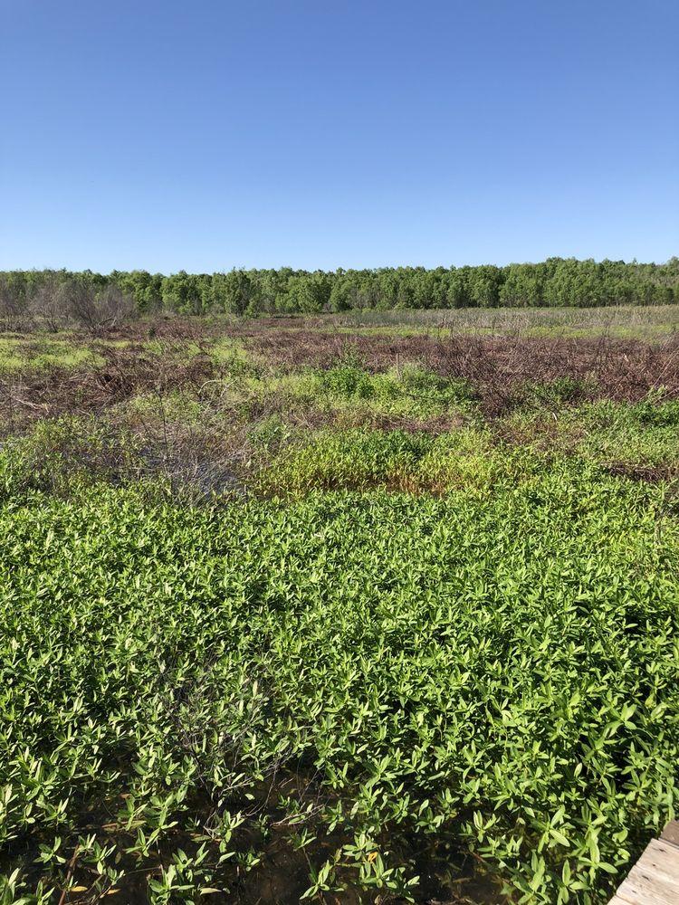 Lake waco wetlands: 1752 Eichelberger Crossing, Crawford, TX