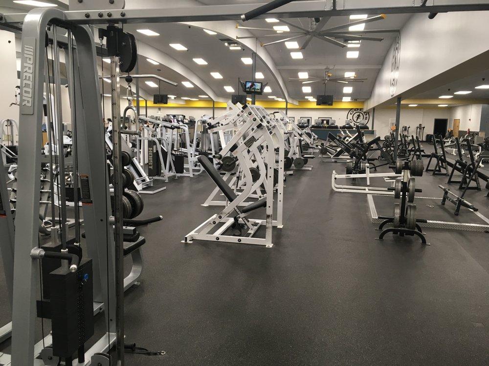 golds gym fitness equipment - 1000×750