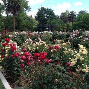 Photo Of McKinley Park Rose Garden   Sacramento, CA, United States