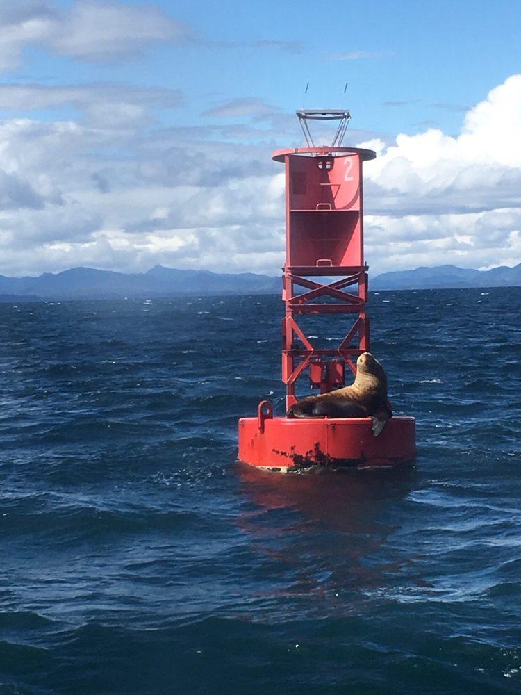 Allen Marine Tours: 1512 Sawmill Creek Rd, Sitka, AK