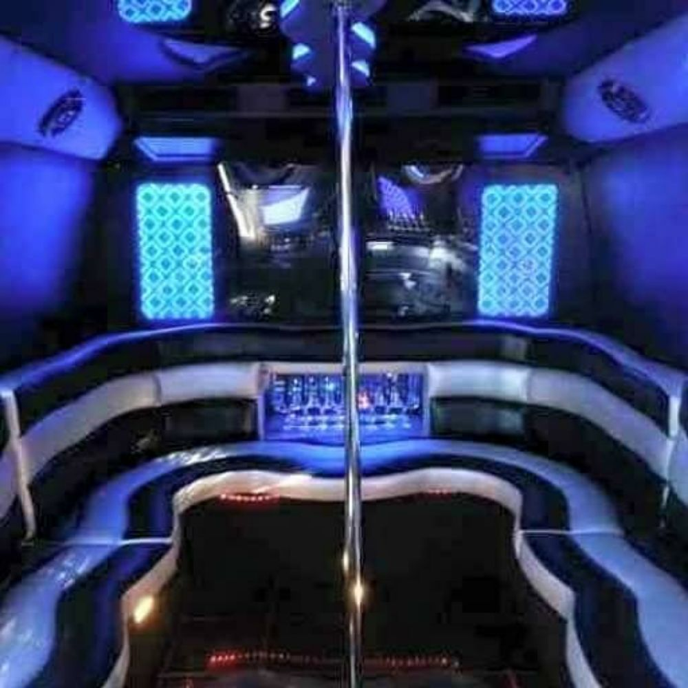 A1 Party Bus and Limo