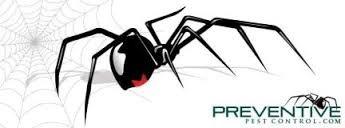 Preventive Pest Control: 946 W Sunset Blvd, Saint George, UT