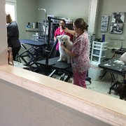 Hotel For Dogs And Cats Pet Services 4110 Creighton Rd