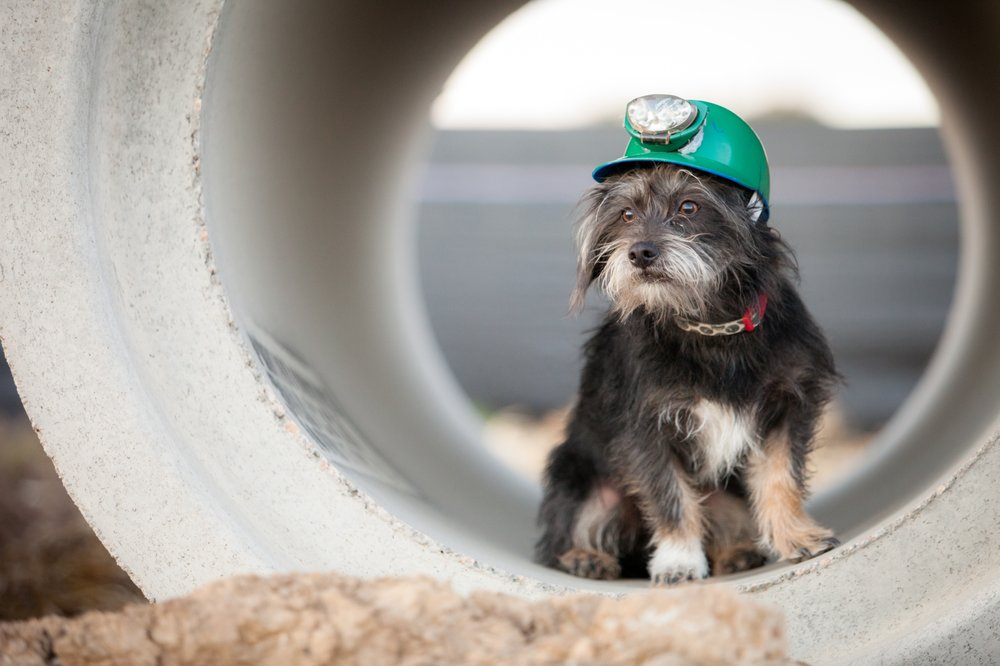 A Better Sewer Inspection